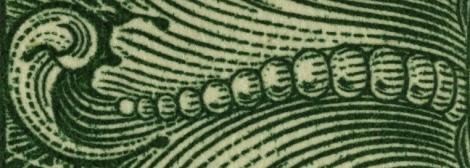 Detaliu Dollar Coada Sarpe