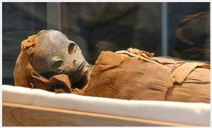 Alien-Mummy-Egypt